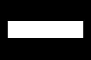 Lee's Enterprise Logo